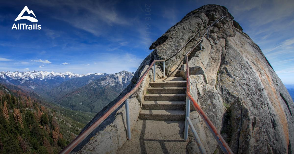 Bien connu Best Trails in Sequoia National Park | 3398 Photos & 2313 Reviews  OT31