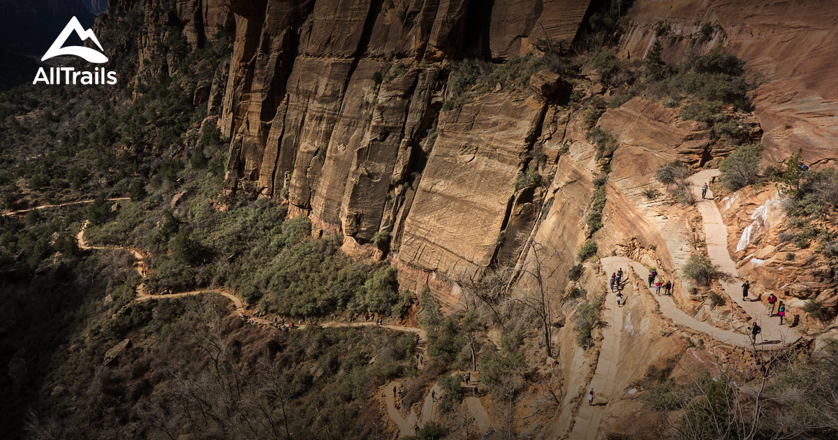 Best Trails in Zion National Park | AllTrails