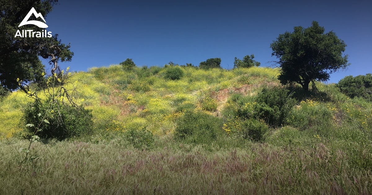Best Trails In Chino Hills State Park