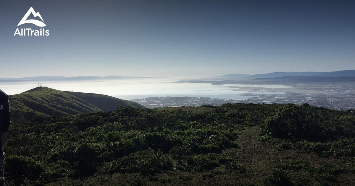 Best Trails In San Bruno Mountain State Park California 181