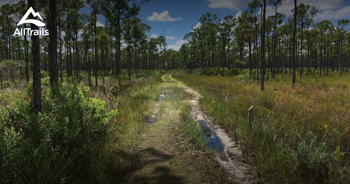 best trails in jonathan dickinson state park