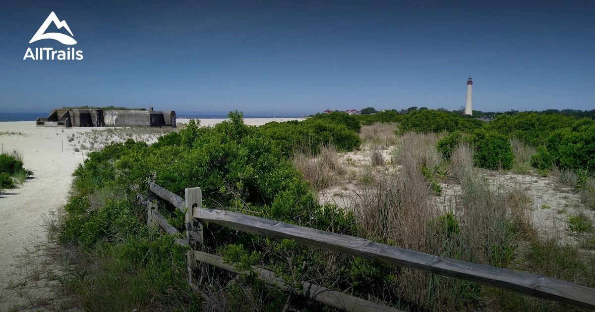 Southern Phone Reviews >> Best Trails in Cape May Point State Park - New Jersey ...