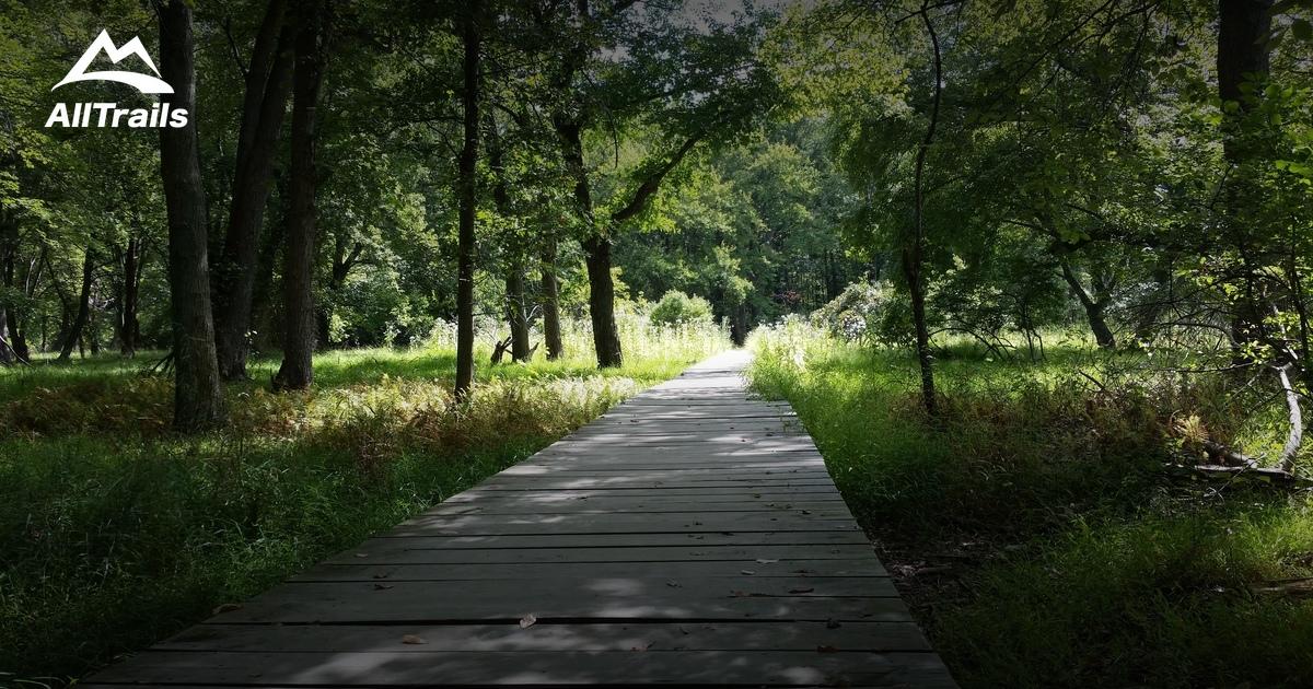 Best Trails In Cheesequake State Park Alltrails Com