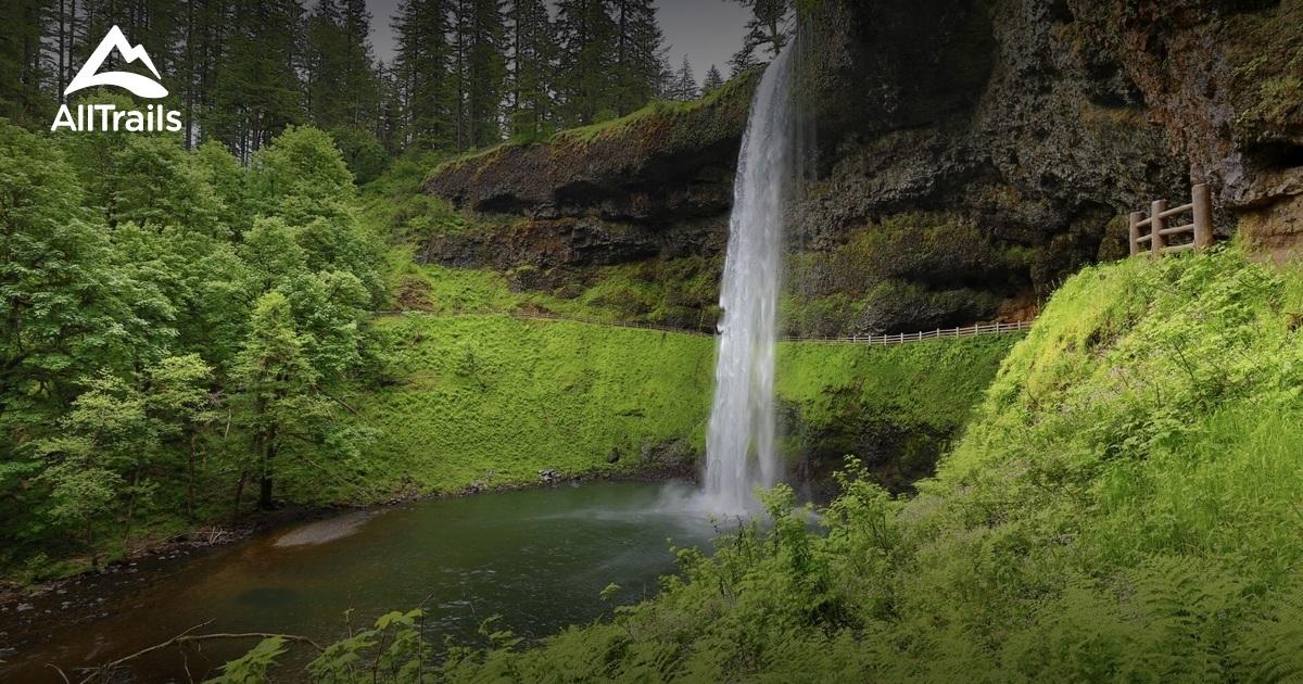 best trails in silver falls state park oregon alltrails