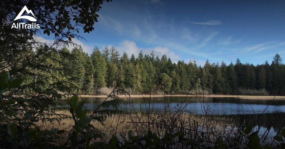 Best Trails In Illahee State Park Washington Alltrails