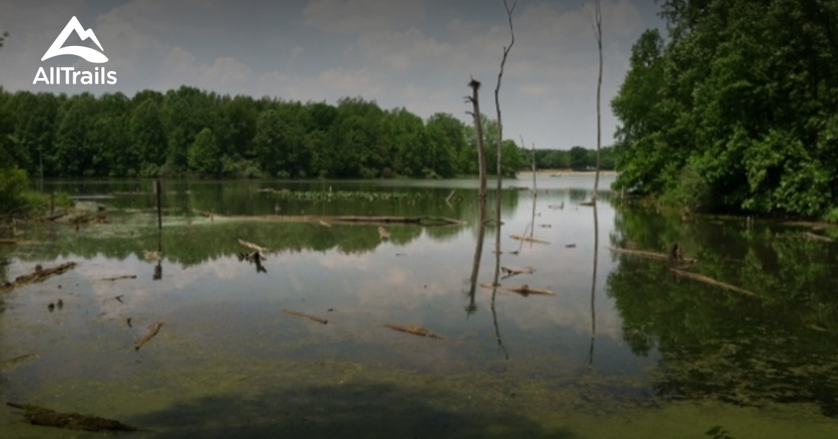 Best Trails In Potato Creek State Park Indiana Photos