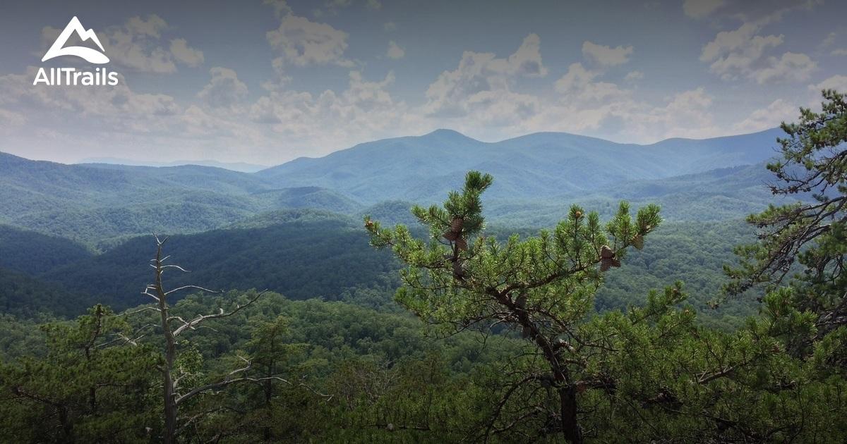 Best Trails In Pisgah National Forest North Carolina Alltrails