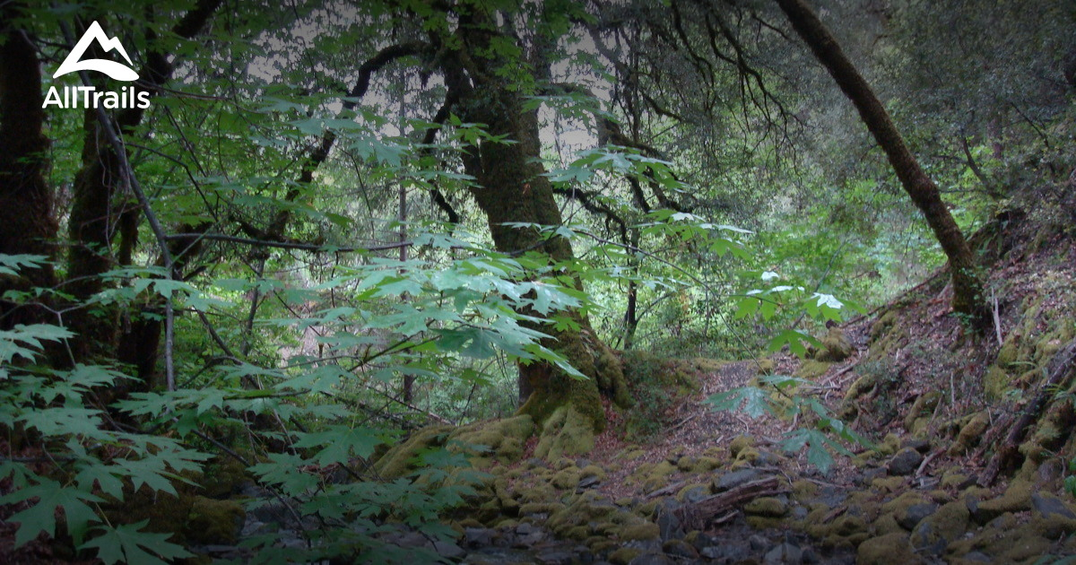 Best Trails In Mendocino National Forest California