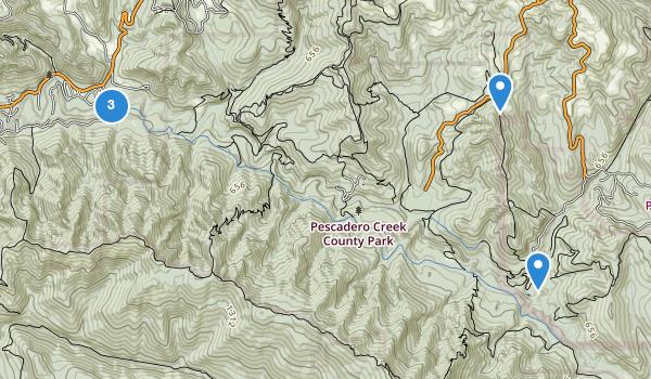 Best Trails in Pescadero Creek County Park | AllTrails.com