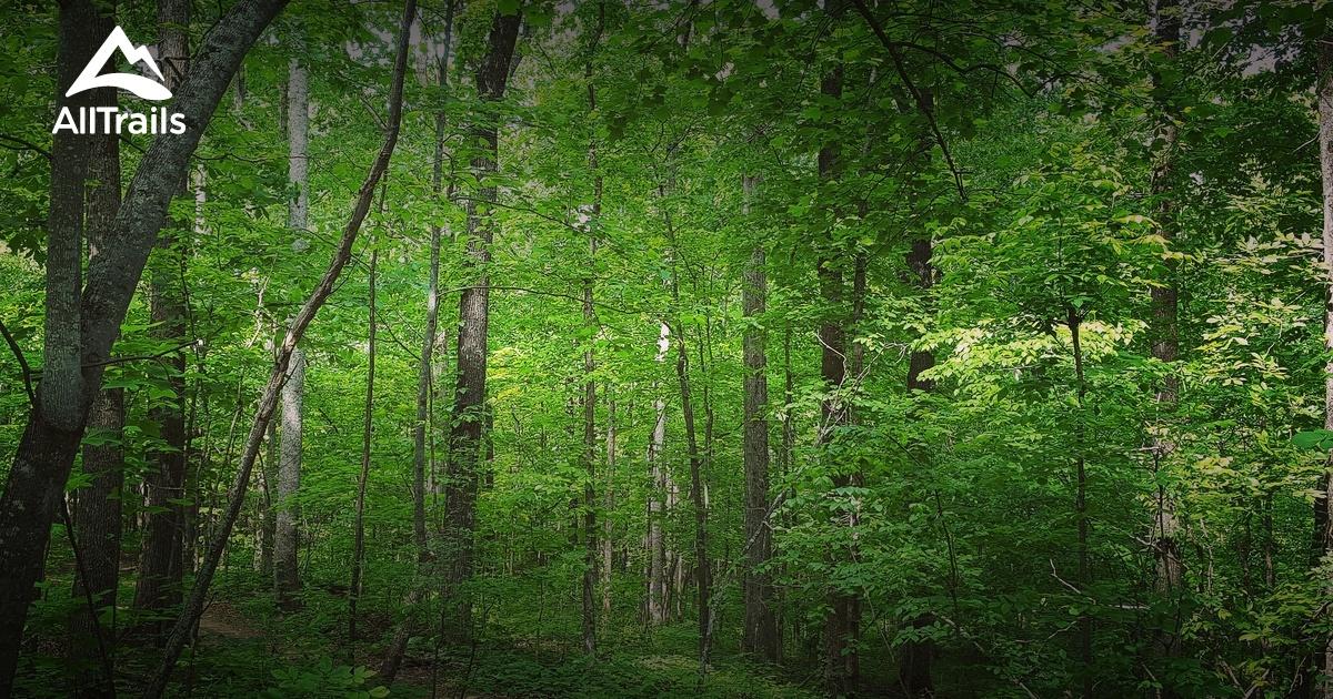 Bowie Nature Park Trail Map