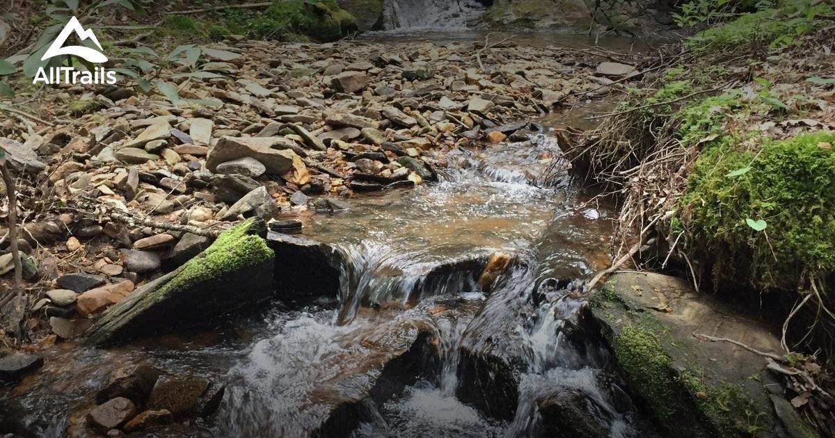 Best Trails in Coopers Creek Wildlife Management Area