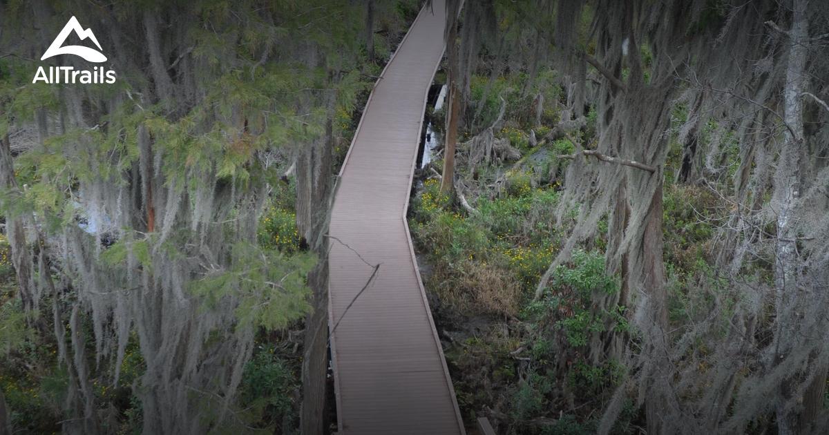 Okefenokee Swamp Park Best Trails in Okefeno...
