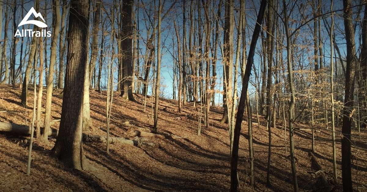 Best Trails in Lake Cumberland State Park