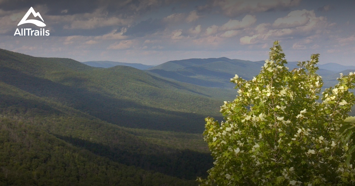 Best Trails in Mountain Lake Biological Station - Virginia ...