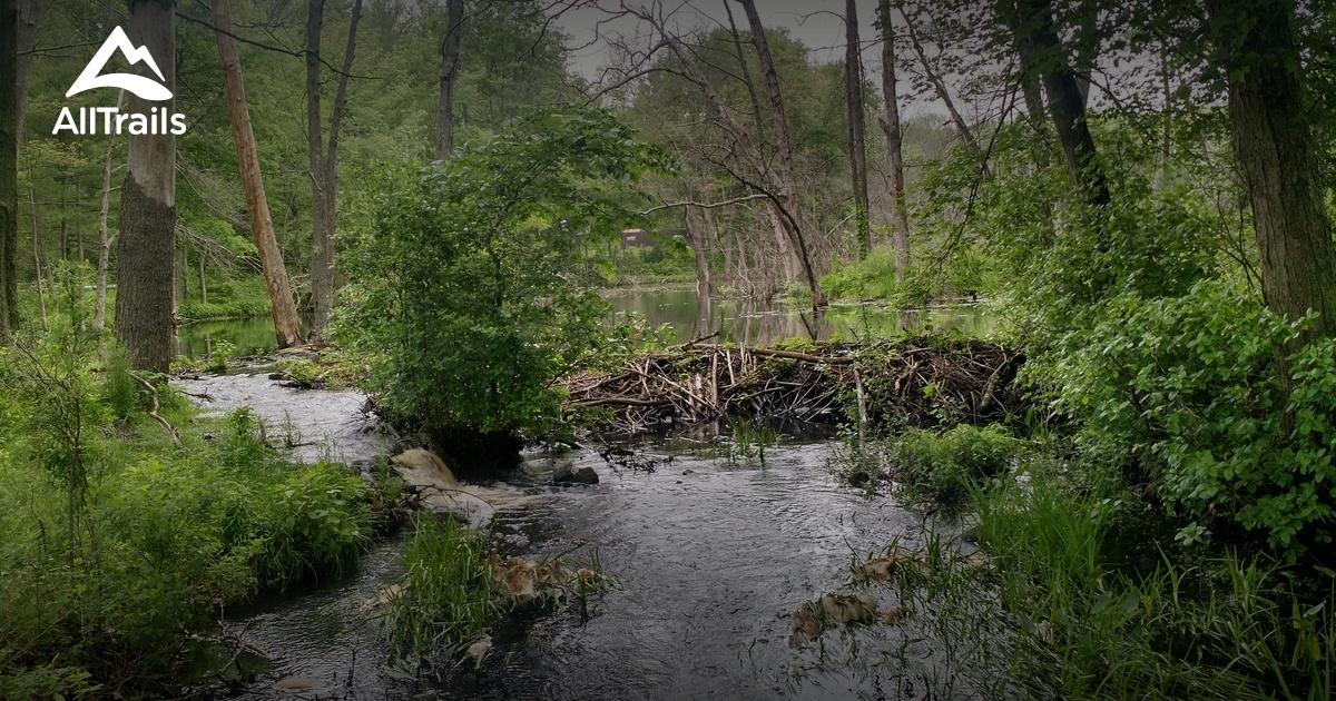 Best Trails In Diamond Hill State Park Rhode Island 47
