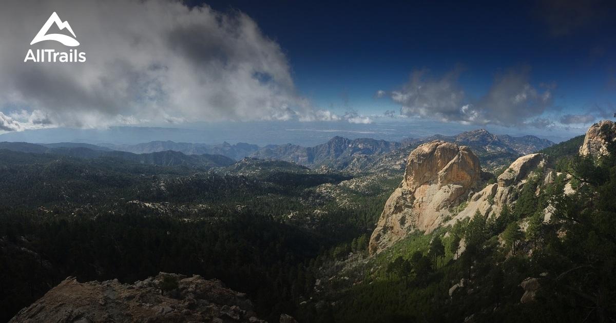Picture of: Best Trails In Santa Catalina Natural Area Arizona Alltrails