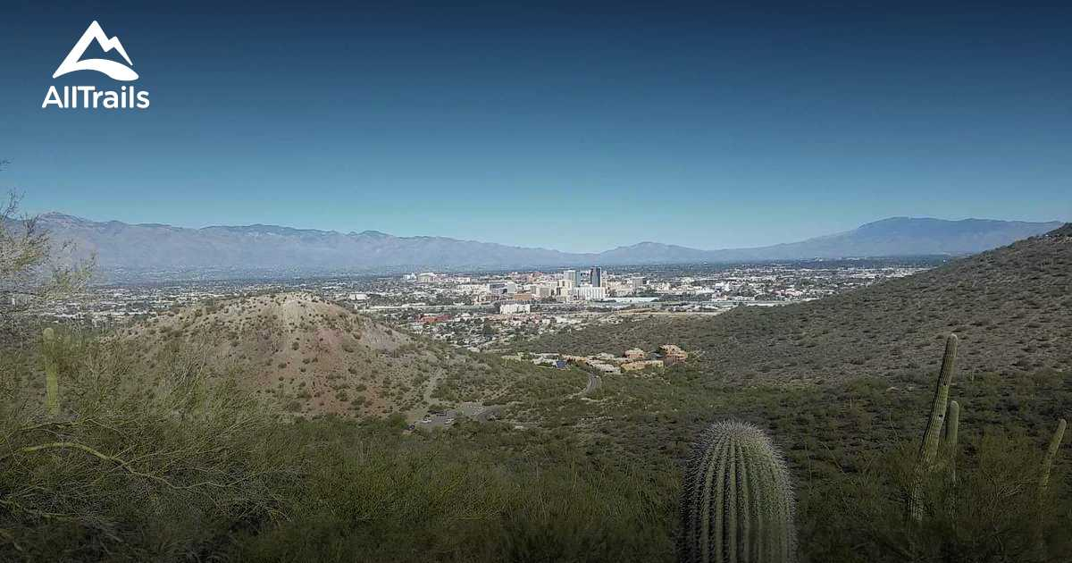 Best Trails in Sentinel Peak Park - Arizona   AllTrails
