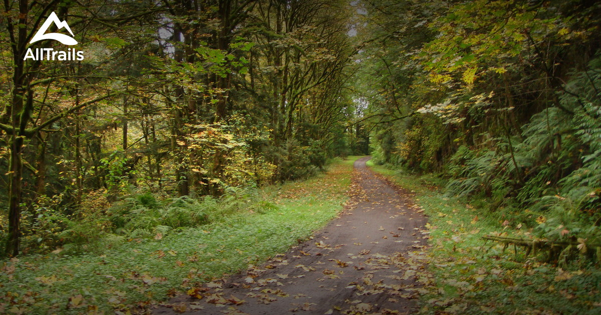 Autumn Magic Along Military Ridge Trail >> Best Trails In Forest Park Oregon Alltrails