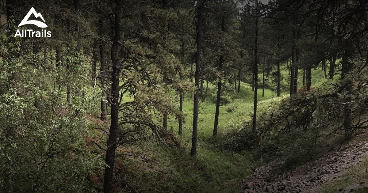 Best Trails In Black Hills National Forest Wyoming Photos - Black hills national forest on us map