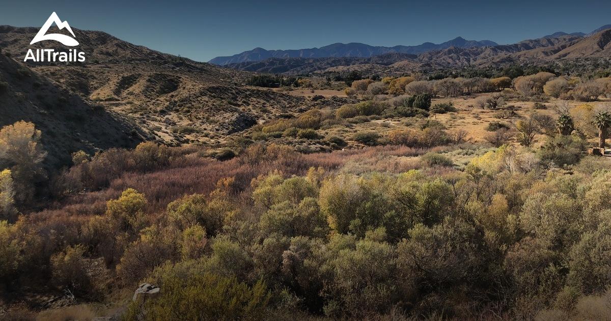Spring Snow In Owen Conservation Park >> Best Trails In Sand To Snow National Monument California Alltrails