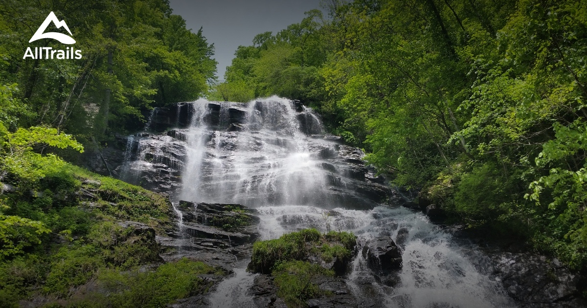 Best Trails In Amicalola Falls State Park