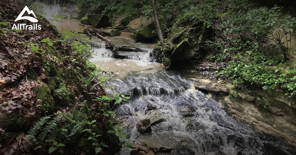Best Trails in Don Robinson State Park - Missouri   AllTrails on