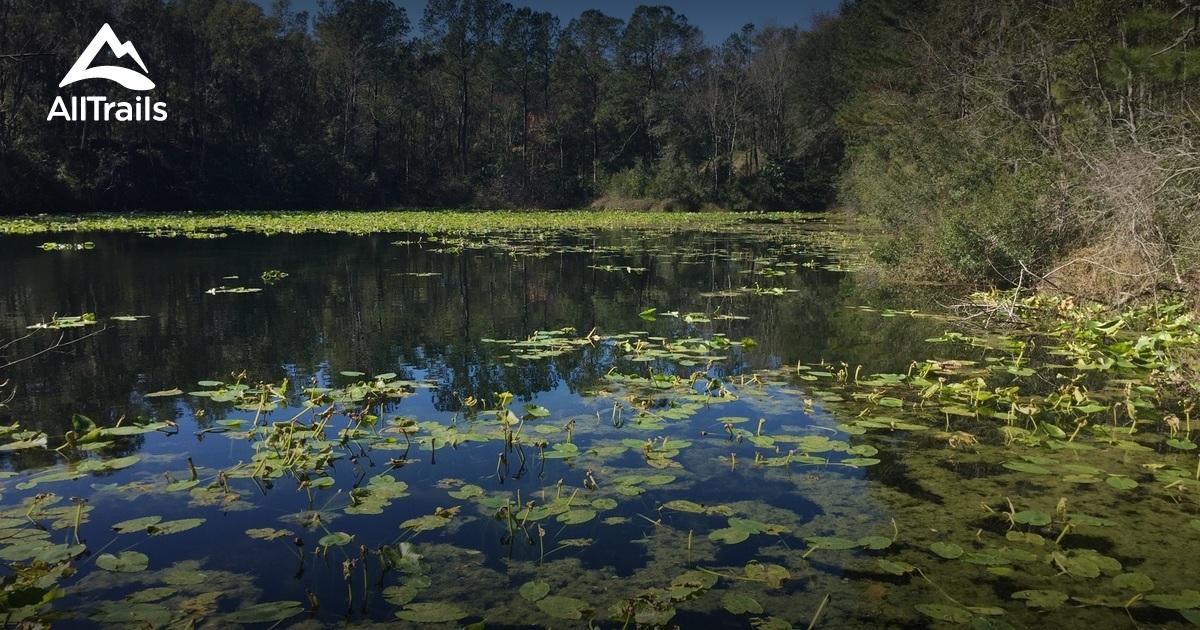 Best trails in jacksonville arboretum and gardens - Jacksonville arboretum and gardens ...