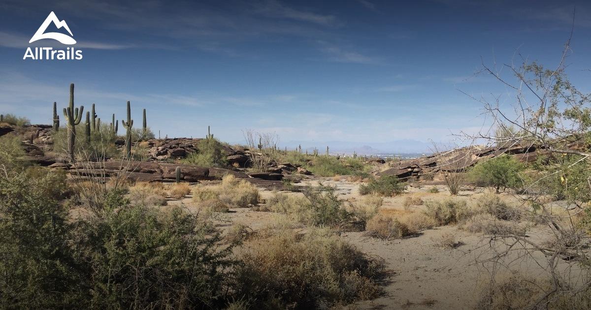 Dog Friendly Trips In Arizona