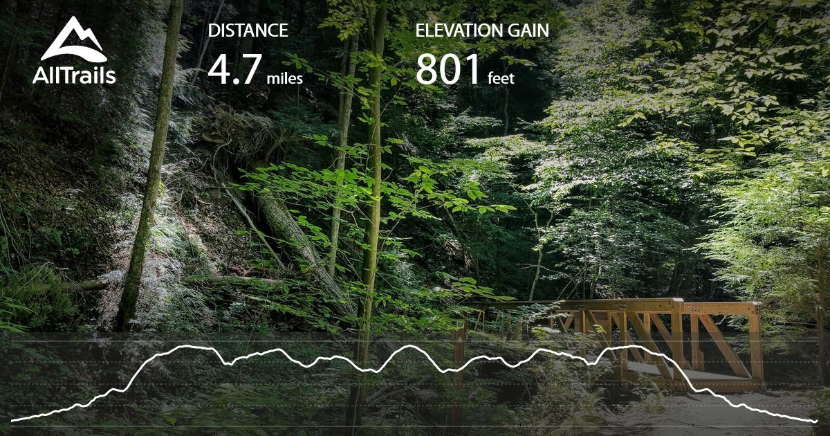 Mohican Hog Hollow Trail Covered Bridge To Fire Tower Ohio Alltrails Com