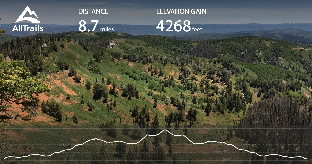X Out Reviews >> Mount Nebo North Trail - Utah | Maps, 202 Photos, 75 Reviews | AllTrails
