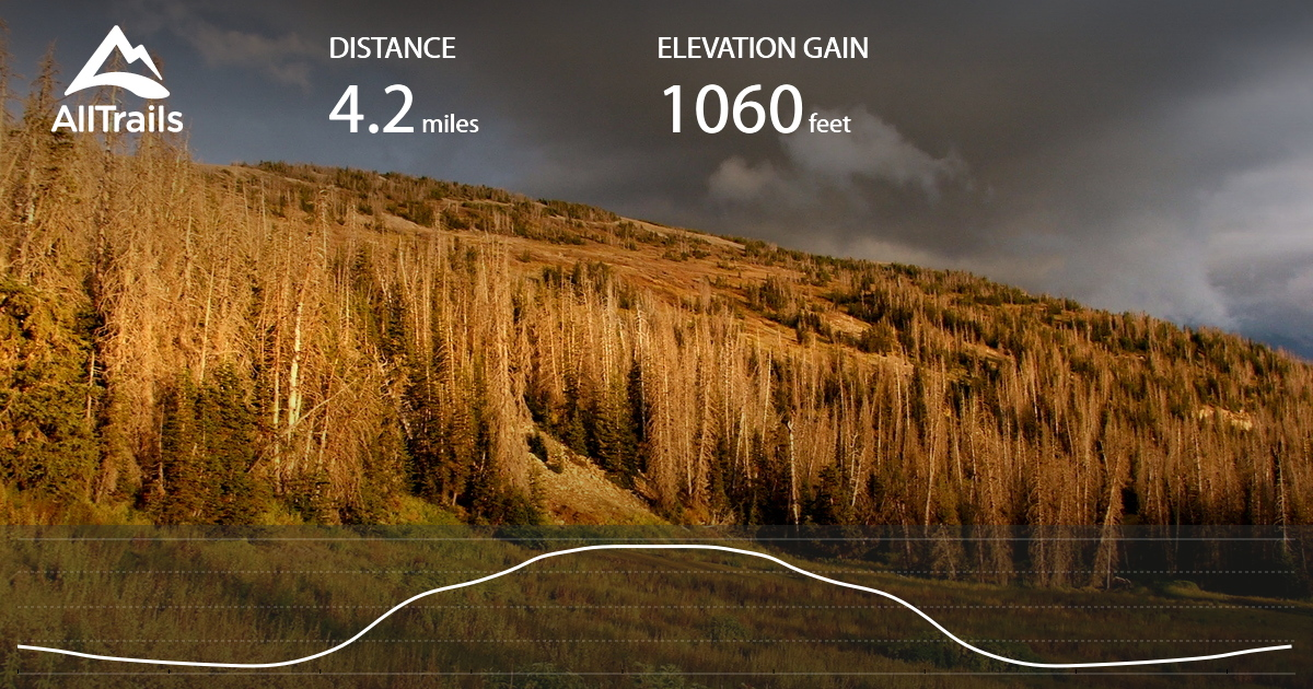Skyline Drive Elevation Map.South Tent Mountain Summit From Skyline Drive Utah Alltrails