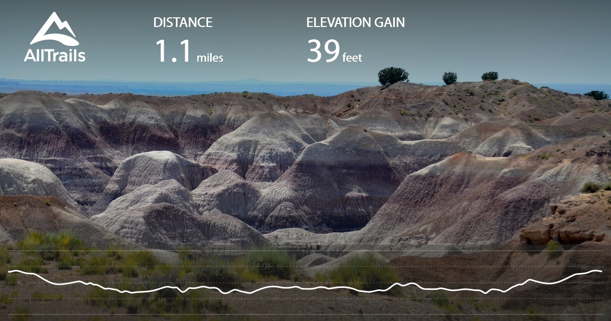 Painted Desert Rim Trail - Arizona | AllTrails on death valley map in us, colorado map in us, las vegas map in us, grand canyon map in us, new mexico map in us, arizona map in us, glacier map in us, yellowstone map in us,