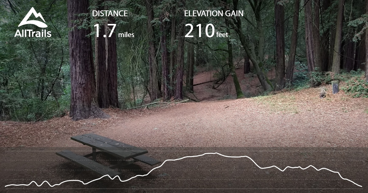 Sequoia Bayview And Big Trees Loop California Alltrails