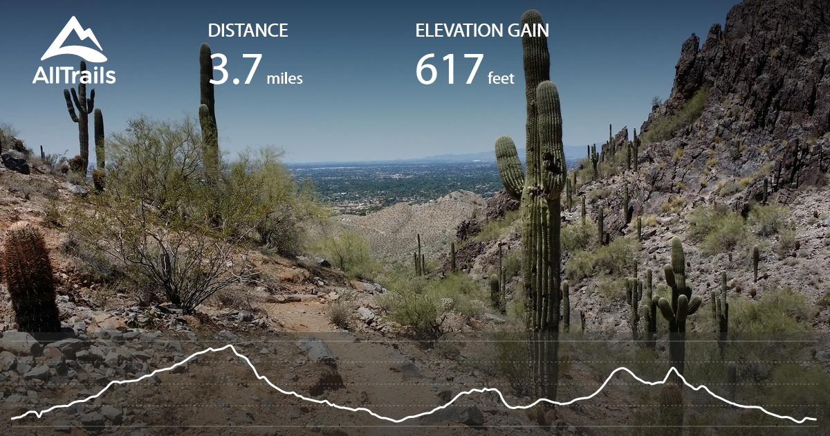 Dreamy Draw Loop Trail - Arizona   AllTrails on echo canyon trail map, springs trail map, squaw peak hiking trail map, red mountain trail map, agua fria river trail map, piestewa peak trail map, bell rock pathway trail map, san marcos trail map, lost dog wash trail map, granite mountain trail map, san tan trail map, phoenix mountains preserve trail map, salt river trail map, bartlett lake trail map, saddle mountain trail map, mcdowell mountain regional park trail map, highland trail map, mcdowell sonoran preserve trail map, north mountain trail map, cloud peak trail map,