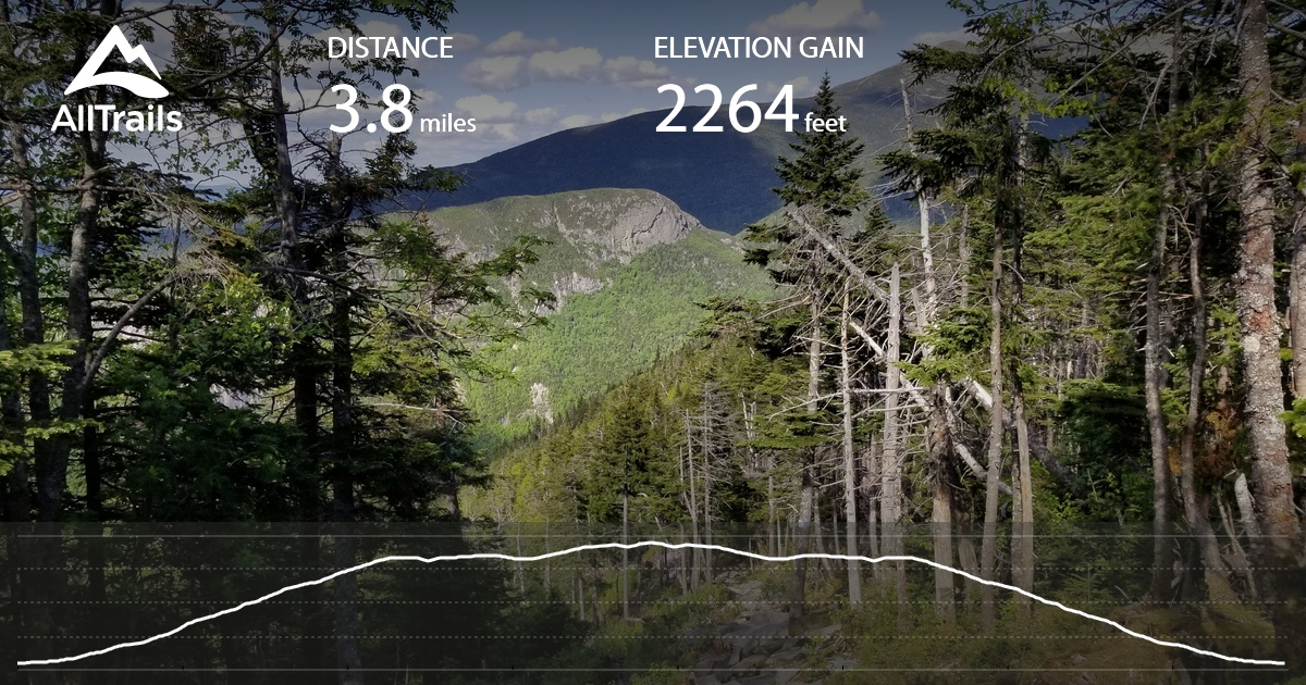 Cannon Mountain Trail Map on