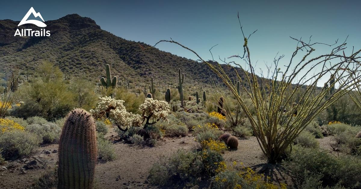 Best Trails near Mesa Arizona 1702 Photos 1918 Reviews