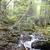 5 star hikes within 30 minutes of Jackson, NH