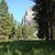 Picture of Zumwalt Meadow And Roaring River Falls: Zumwalt Meadow Loop and River Trail