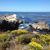 Point Lobos State Reserver