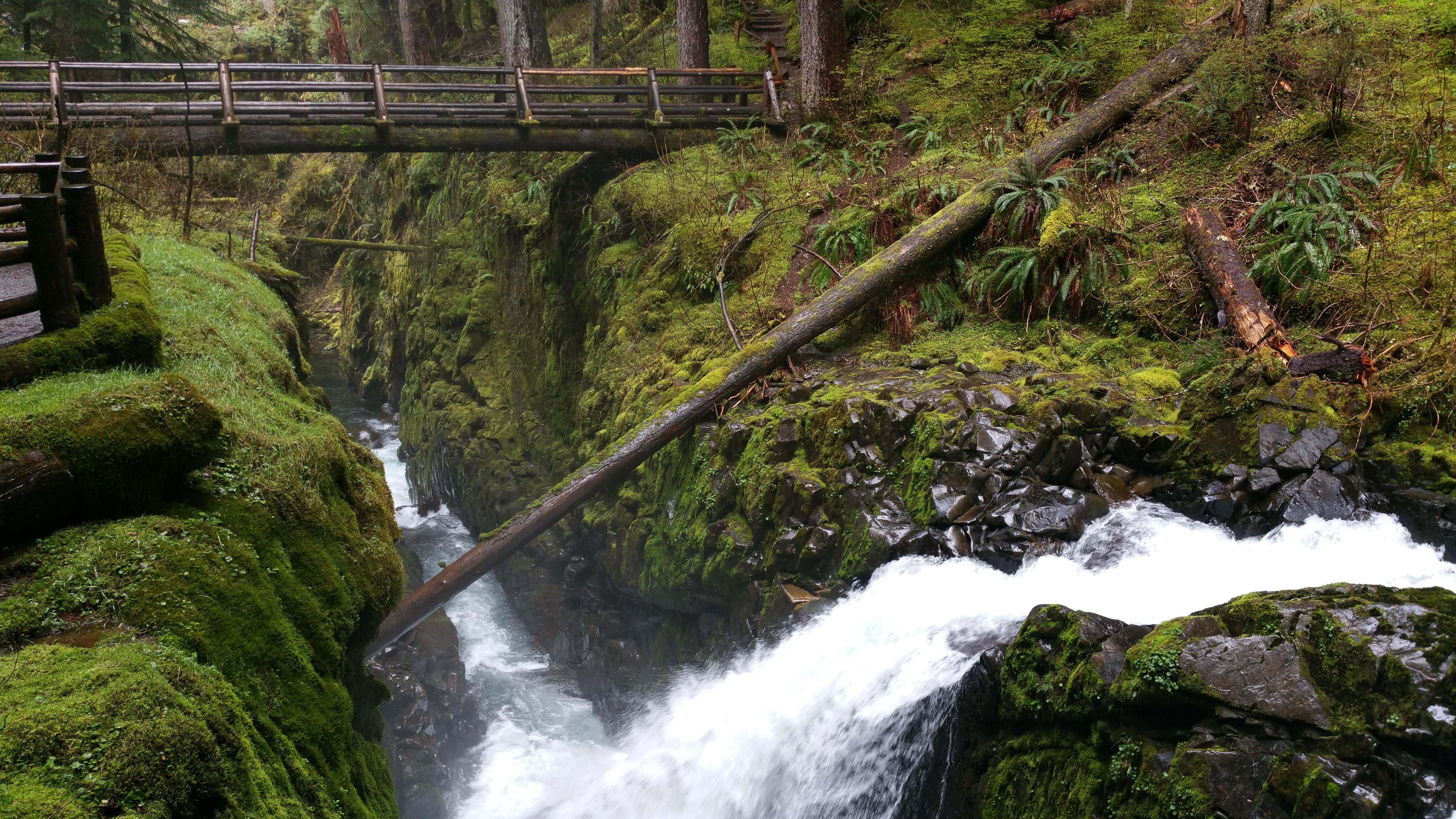 Sol Duc Falls Trail Washington Alltrails Com