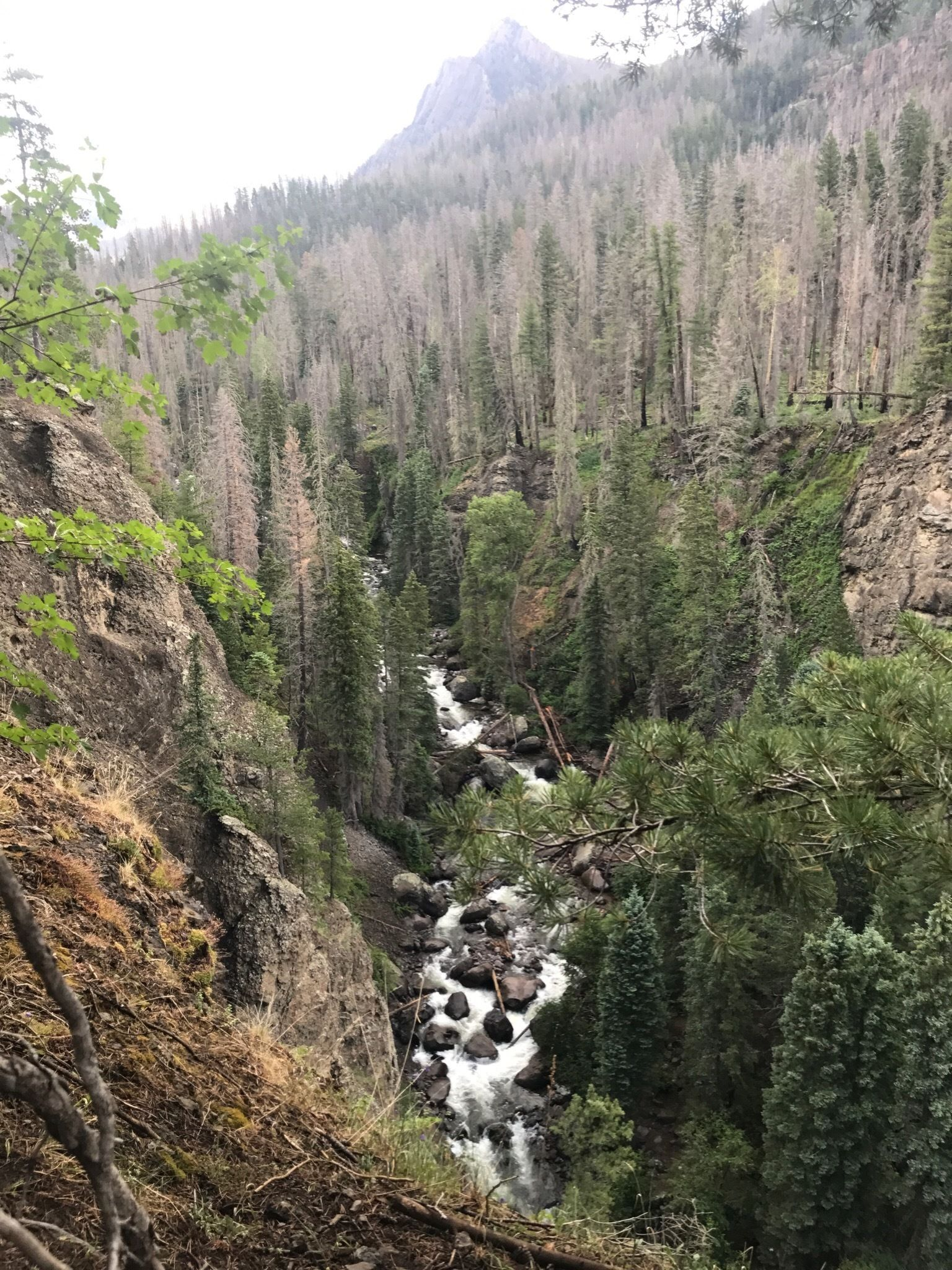 Rainbow Hot Springs Colorado Alltrails