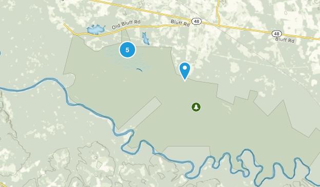 Congaree National Park Map