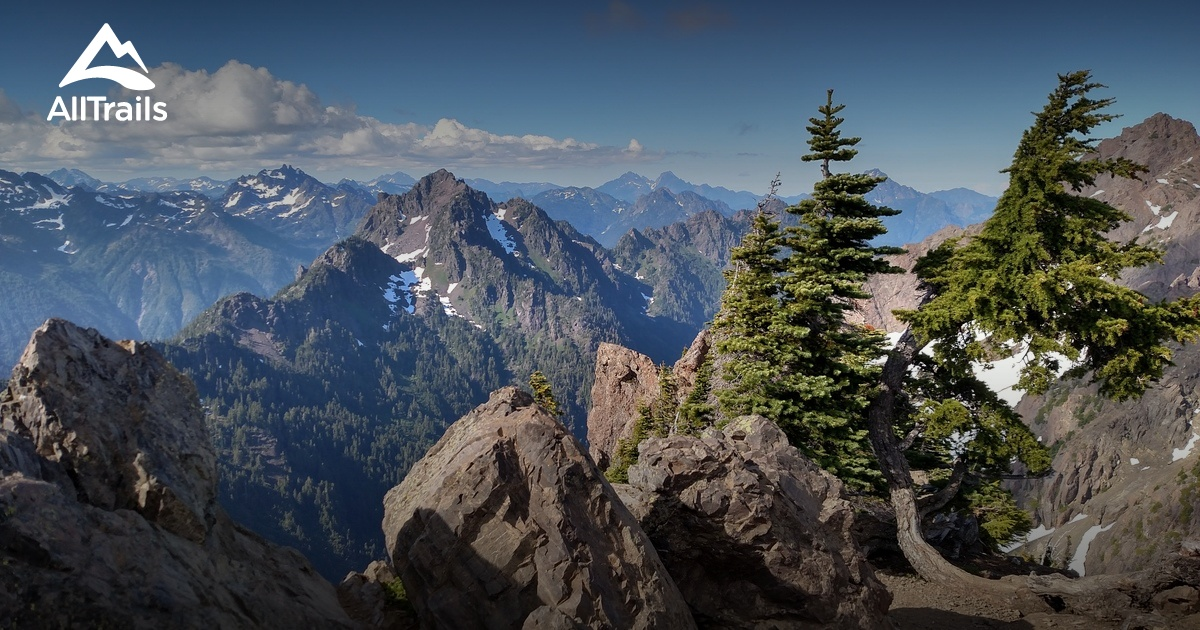 Best Trails In Olympic National Park AllTrailscom - Olympics mountain range map of us