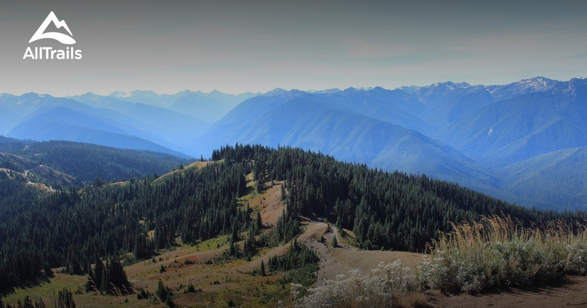 Best Trails In Olympic National Park Alltrails