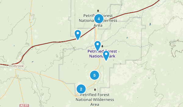 Petrified Forest National Park Map