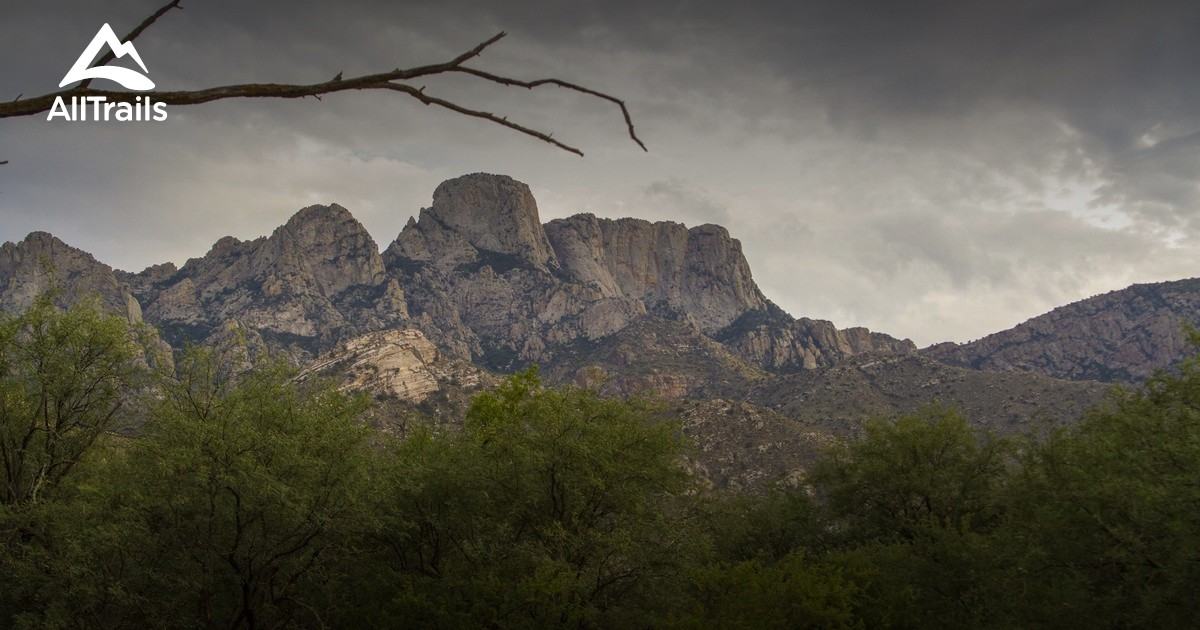 Best Trails In Catalina State Park Arizona 606 Photos