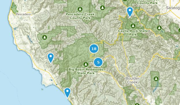 Best Trails in Big Basin Redwoods State Park - California   AllTrails