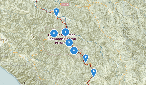 trail locations for Humboldt Redwoods State Park