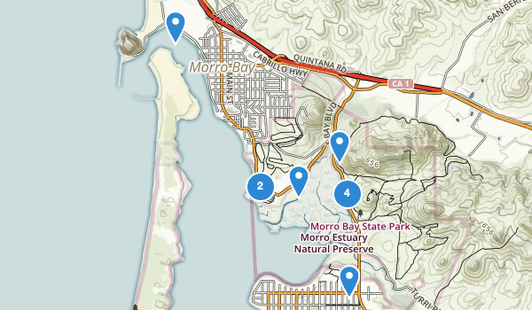 trail locations for Morro Bay State Park