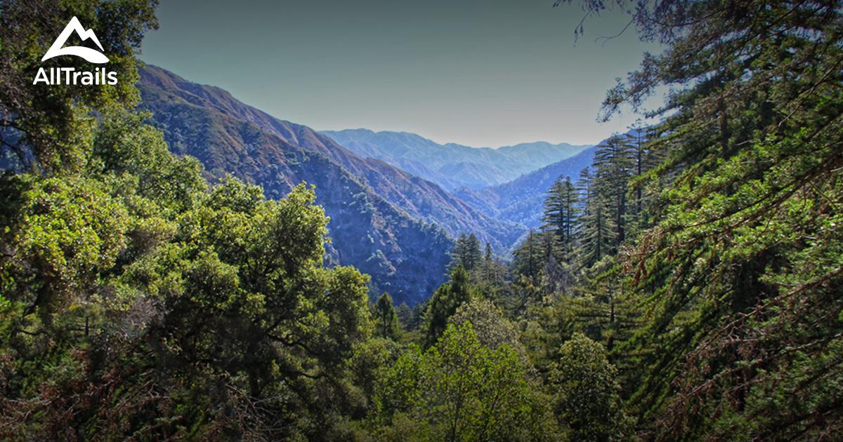 Pfeiffer Big Sur State Park Nature Trail